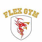 FLEX-GYM